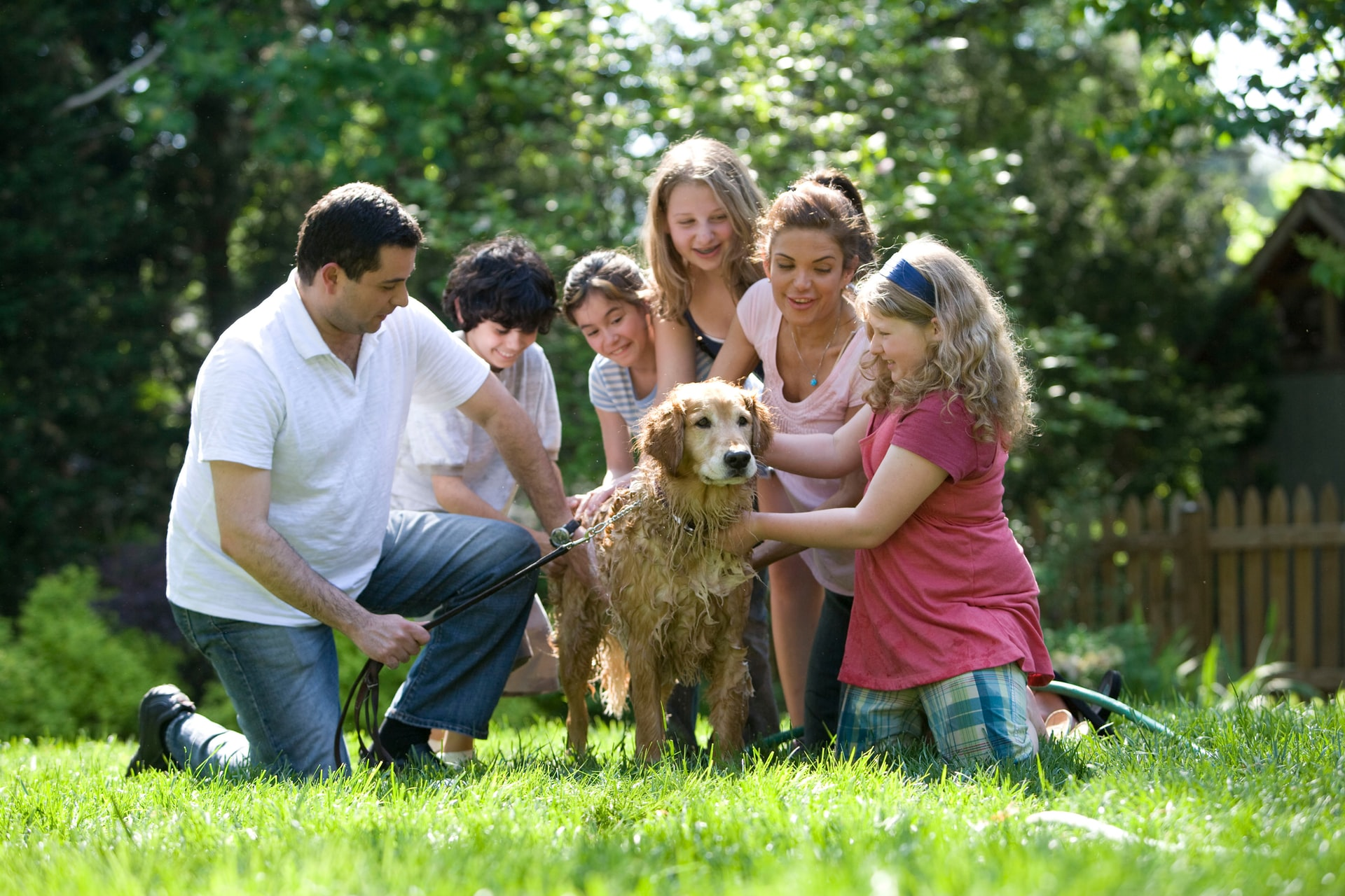 A family taking care of Dog f- physiotherapy